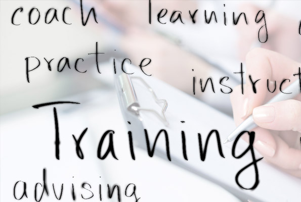 Integrate Training Into Your Project